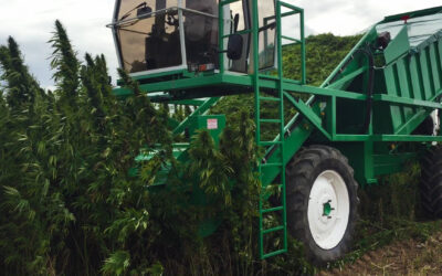 Nicholson Launches Hemp Harvester