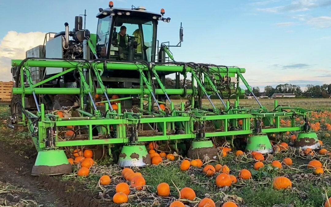Pumpkin Harvesting Made Easy!